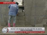Over 50 'Pablo' victims laid to rest in New Bataan