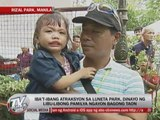 Thousands welcome New Year in Luneta