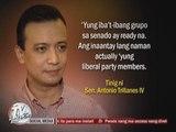 Trillanes bares plot to oust Enrile