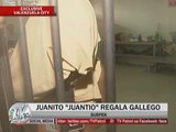 EXCL: Notorious  burglar arrested
