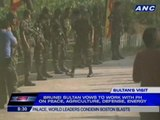 Brunei sultan pays tribute to Rizal