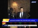 Pistorius murder trial delayed until August
