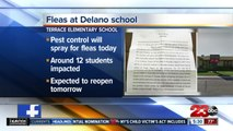 Officials: Terrace Elementary closed Thursday due to flea infestation in 'small number' of classrooms