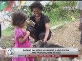 Hero dog Kabang arrives home after US treatment