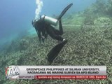 Typhoon 'Pablo' destroys corals in Apo Island