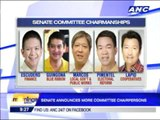 Senate announces committee chairpersons