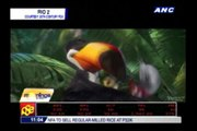 Watch trailer of animated film 'Rio 2'