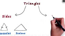 What are the Different Types of Triangles