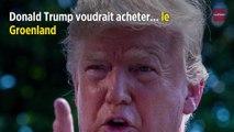 Donald Trump voudrait acheter... le Groenland