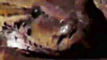 장유출장안마 -후불1ØØ%ョØ7ØM7575M0069{카톡CC6969} 장유전지역출장마사지 장유오피걸 장유출장안마 장유출장마사지 장유출장안마 장유출장콜걸샵안마 장유출장아로마 장유출장㌥㌬≙