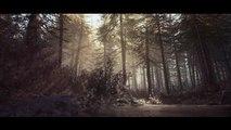Blair Witch - Nuevo Tráiler 4K