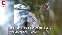 Kazdağları'ndaki dereye elektrik vererek balık katliamı yapıldı