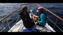 Scotland's basking sharks' secret underwater lives captured by robot