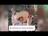 Après l'élimination de l'Allemagne, les supporters mexicains déclarent leur flamme à la Corée du Sud