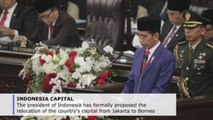 Indonesia's Widodo formally proposes relocating capital to Borneo