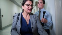 Tlaib Rejects Israeli Invitation - Cancels Trip