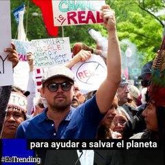 Leonardo DiCaprio: la fama puesta al servicio del planeta