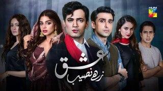 Ishq Zahe Naseeb Episode 10 Promo HUM TV Drama