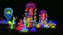 """Bologne fait son festival de la """"Lanterne chinoise"""""""