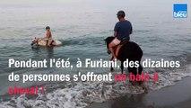 Ils s'offrent un bain à cheval en Corse !