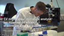 """Une """"langue artificielle"""" pour analyser les nuances du whisky"""