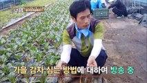 1인 방송 '쌈 채소' 농부, 가장 반응 좋았던 영상은?
