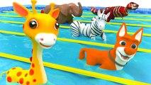 Animales para Niños con una carrera emocionante - Aprende los Colores y Sonidos de los Animales