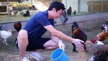 [선공개] (닭 취급 주의!) 넘사벽 매력으로 연매출 20억! 딱 봐도 비싸보이는 닭의 비주얼!!!