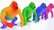 Aprende Animales y Colores con divertidos Monos y bolas - Videos Educativos para Niños