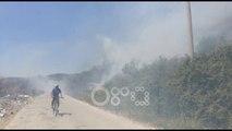 RTV Ora - Lushnje, zjarri djeg plantacione me ullinj