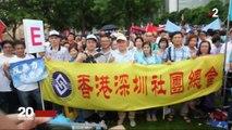 Hong Kong : la manifestation de soutien au gouvernement, symbole d'une ville qui se divise