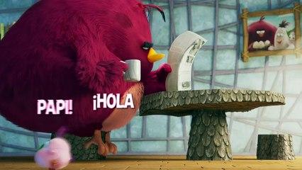 ANGRY BIRDS 2 LA PELÍCULA - Cuando los polluelos la lian parda.