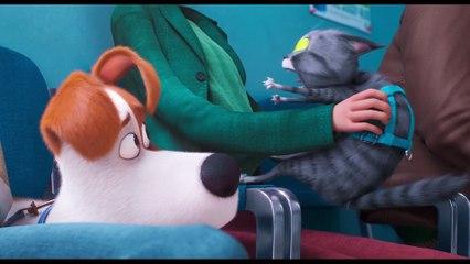 MASCOTAS 2 - Clip de la Película - Max visita al veterinario