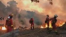 El Fuego de Gran Canaria afecta a 500 hectáreas y todos sus focos están activos