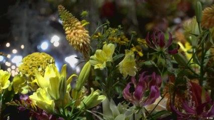 بحر زهور في قاعة مدينة بروكسل