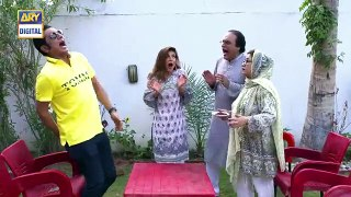 Bulbulay S 2  Ep 15  18th August 2019  ARY Digital Drama