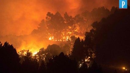 L'île de Grande Canarie ravagée par un incendie