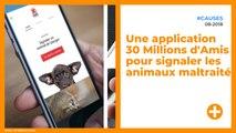 Une application 30 Millions d'Amis pour signaler les animaux maltraités