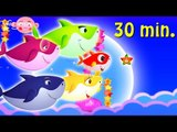 Baby Shark With Little Star in Mid-Autumn Festival + More Kids Songs | Nursery Rhymes & Cartoon Song