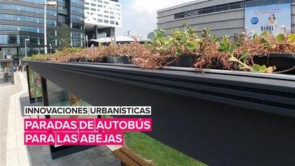 Innovaciones urbanísticas: Paradas para las abejas