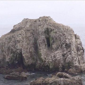 Islote Peñablanca y Punta de Peñablanca, Algarrobo, Chile