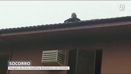 Resgate de tiriva presa em fio de pipa mobiliza bombeiros em Curitiba