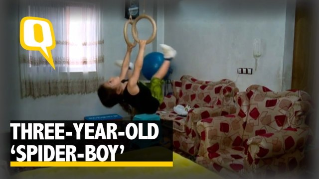 The Quint: Check out this 3-Year-Old 'Spider-Boy' Scaling Walls like a Ninja