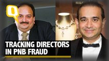 Crorepati or Scapegoat? Tracking Directors Booked in the PNB Fraud