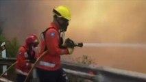 Mega incendio sull'isola di Gran Canaria, evacuate 8.000 persone