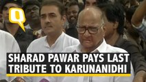 NCP Chief Sharad Pawar Pays Last Respects to Karunanidhi