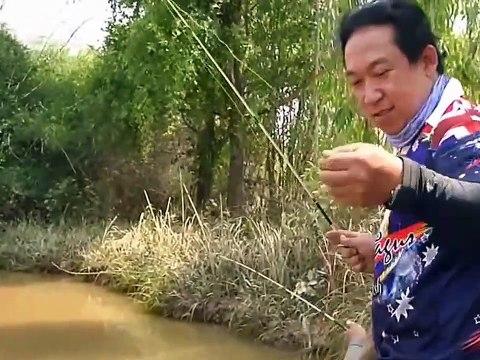 Xem Đi Câu Cá Lăng Ở Thái Lan