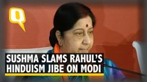 He's Confused About His Religion: Sushma Swaraj Raps Rahul Gandhi