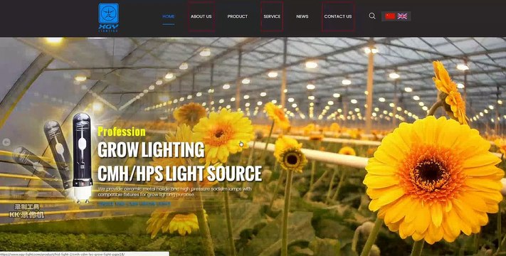 Zhejiang Xinguangyang Lighting Co., Ltd.