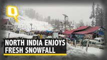 North India Covered in Blanket of Snow